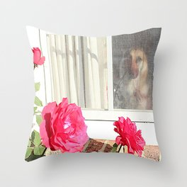 Tara's Rosey Window  Throw Pillow