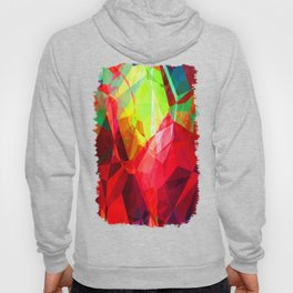 Mixed color Poinsettias 3 Abstract Polygons 1 Hoody