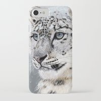 snow leopard iPhone & iPod Cases featuring Snow Leopard by Aaron Jason
