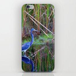 Little Blue Heron iPhone Skin