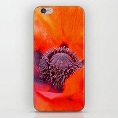 poppy macro IV iPhone & iPod Skin
