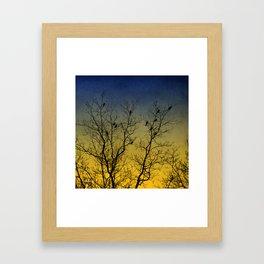 Silhouette Bird Art Framed Art Print