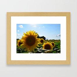 Sunflowers & Sunshine Framed Art Print