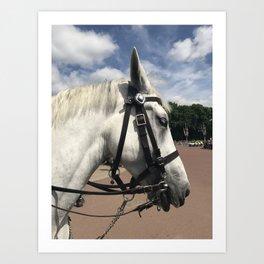 Police Horse Art Print
