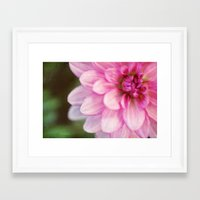 dahlia Framed Art Prints featuring dahlia by Beverly LeFevre