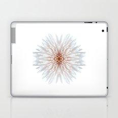 Chrysanthemum Peach Bomb Laptop & iPad Skin