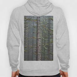 Pacfic Northwest Mountain Forest III - 108/365 Landscape Photography Hoody
