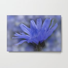 the beauty of a summerday -2- Metal Print