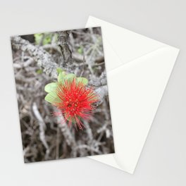 Ohia Stationery Cards
