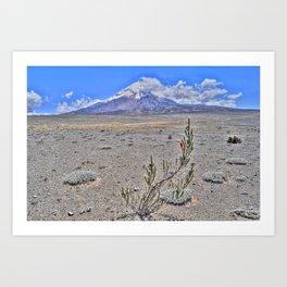 Chimborazo volcano Art Print