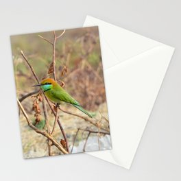 Green Bee-eater Stationery Cards