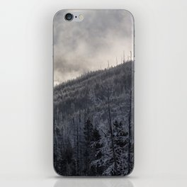 Steamy Forest -  Yellowstone National Park iPhone Skin