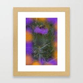little pleasures of nature -160- Framed Art Print