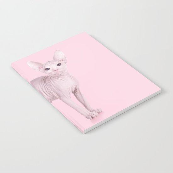 ALBINOCAT Notebook