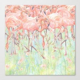 Flamingo Meadow Canvas Print