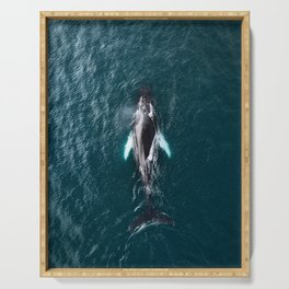 Humpback Whale in Iceland - Wildlife Photography Serving Tray