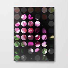 Rosas Moradas 1 Art Circles 1 Metal Print