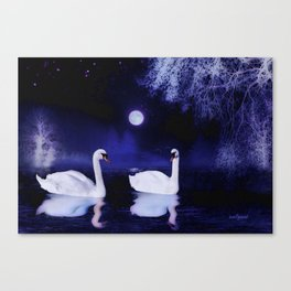 Swan lake at midnight Canvas Print