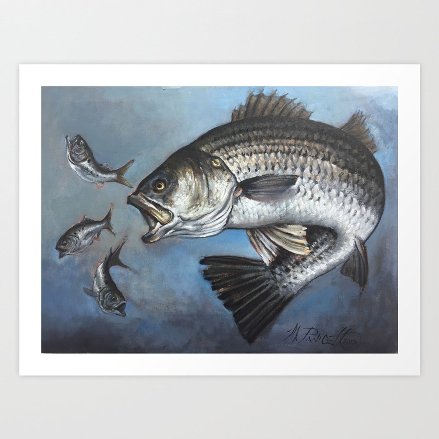 Striped Bass Chasing Bunker Art Print By Mikeyfishhook Society6