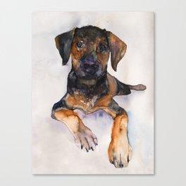 DOG #11 Canvas Print