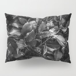 closeup leaves texture background in black and white Pillow Sham