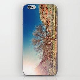 Sun desert tree iPhone Skin