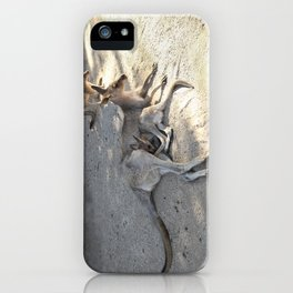 Kangaroo and Joeys iPhone Case