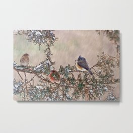 Three Little Birds in a Blizzard Metal Print