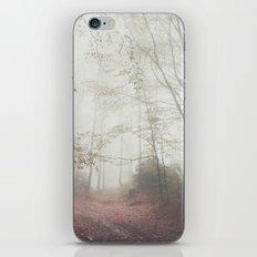 Autumn paths II iPhone & iPod Skin