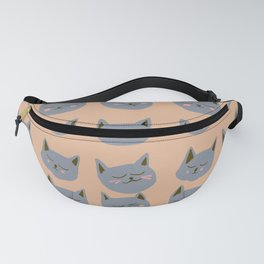 Abstraction_CAT_FACE_EXPRESSION_Minimalism_001 Fanny Pack