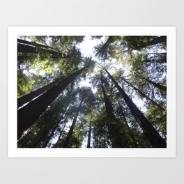 Look Up so FAR up Art Print
