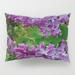 Lilacs in Bloom Pillow Sham