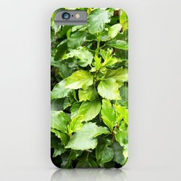 green summer iPhone Case