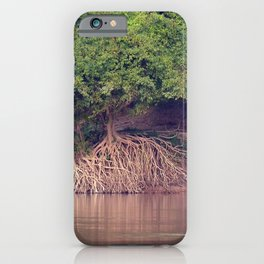 Mangrove Trees on the Mekong River Bank Laos iPhone Case