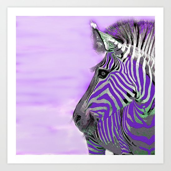 Zebra Purple and White Art Print