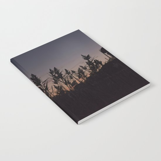 Phragmites silhouette at sunset Notebook