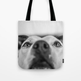 Leeloo the Dog Tote Bag