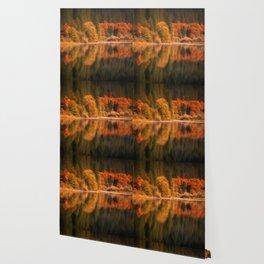 Natures Mirror reflecting Fall colors Wallpaper