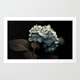 Dark Blue Art Print