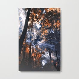 Into the Forest of Light Metal Print