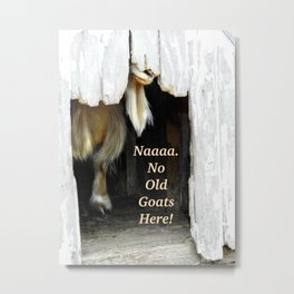 No old goats here! Metal Print