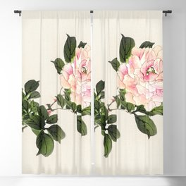 Pink rose by Kōno Bairei Blackout Curtain
