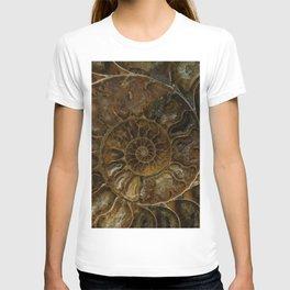 Earth treasures - brown amonite T-shirt