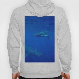 Underwater Humpbacks 5 Hoody