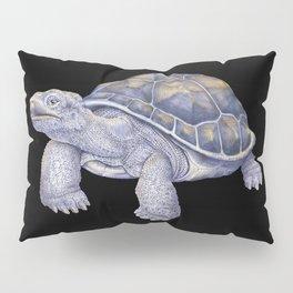 Tortoise Pillow Sham