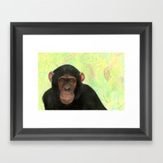 mirror of nature Framed Art Print