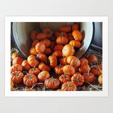 Mini Pumpkins Art Print