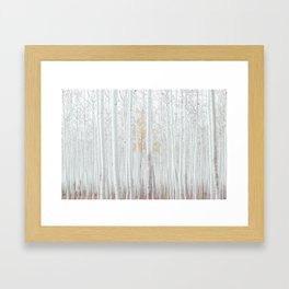 Pale Forest Framed Art Print