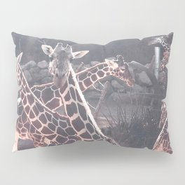 Giraffe Picture // Spotted Long Neck Graceful Creatures in Wildlife Preserve Pillow Sham