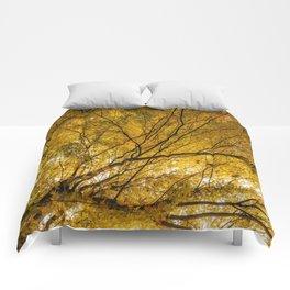 Incandescence Comforters